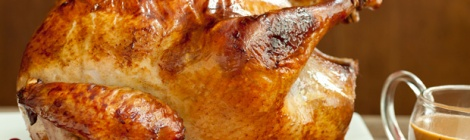 turkey accio de gracies thanksgiving